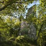 torre di rozzo lezzeno (2)