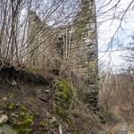 castello di rezzago (3)
