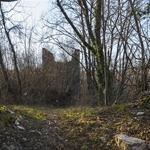 castello di rezzago (7)