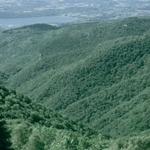 Il solco della Valle Bova