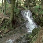 Cascata del Lambro