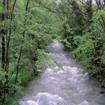 Il torrente Cosia in piena